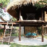 tree house bungalow