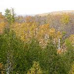 Overlook view from trail on grounds