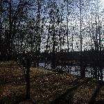 im Garten mit Blick auf den Fluss
