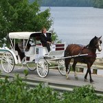 Our carriage available for weddings and tours
