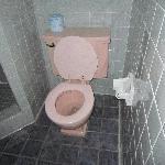 Rosa Toilette....