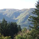 View from Gavinana