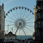 brighton wheel viewed from  madeira place