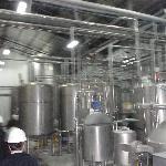 Artesanal Draft Beer
