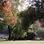 The grounds with fall colors