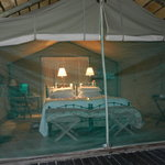 Tent cabins were roomy and airy...loved hearing the animals