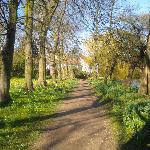 Garten des Magdalene College