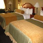 Large comfortable room with 2 queen beds