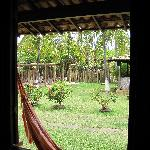 vue sur le jardin depuis l'intérieur du bungalow