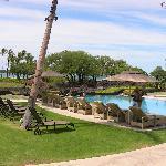 great pool - beautiful grounds