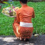 offering in the garden