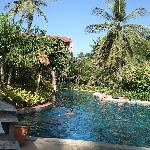 Hotel pool again