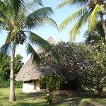 giriamalodge bungalows