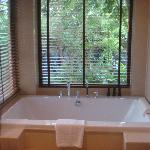the bathroom with windows over looking scenery