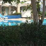 Nobody in the pool