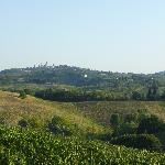 the view - San Gimignano