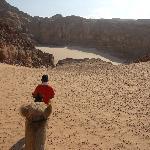 Camel ride, Wadi Ghazala
