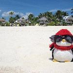 The best beach on the island!