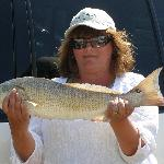 Another Good Redfish