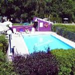 Ogopogo Motel`s Pool / Piscine