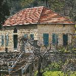 Houses in Jezzine's Area 6