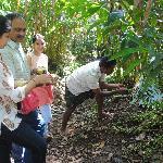 Owner Mr Santosh showing us Cardomum crop