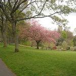 Photo de Lister Park