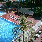 poolside bar and pool