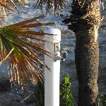 Bild från La Quinta Inn & Suites Oceanfront Daytona Beach