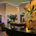 Vida Salon and Day Lounge