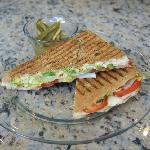 Vegetarian Panini (others available)