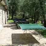 Zona ping pong