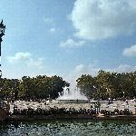 Vista del Parque de María luisa desde el edificio central. (36593277)