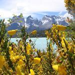 Vista desde Lago Pehoe