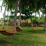 hammocks of paradise