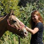 Horses & western hospitality