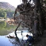 Photo of Vilar Riu de Baix
