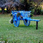 An old horse cart in the front garden