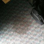 carpet...gross!!!!