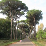 Ente Parco Regionale Migliarino San Rossore Massaciuccoli Foto