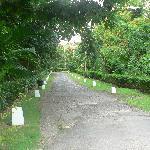 Route d'accès au domaine