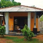 Yala bungalow