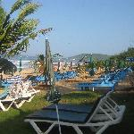 sunbeds at the garden of the resort