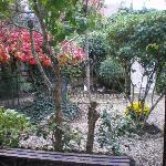 je jardin, vue de la chambre