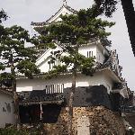 Okazaki Castle Foto