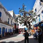 beautiful Essaouira