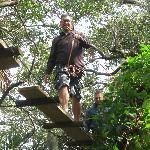 Foto de Treetop Trek
