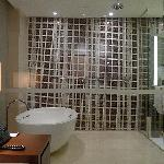Another view of shower stall and bath tub
