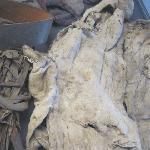 old sail textile