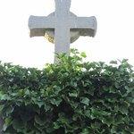 Friedhofe Foto